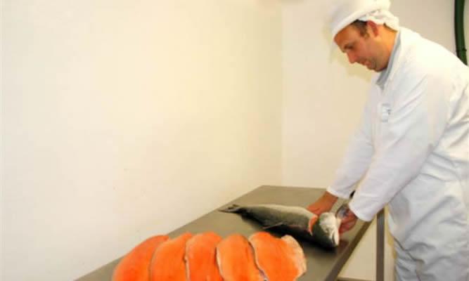 preparing_salmon